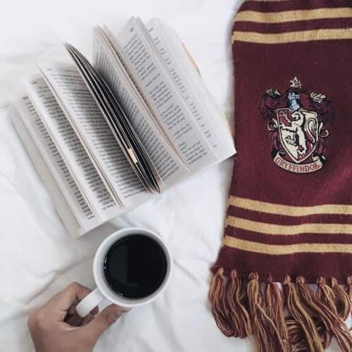 article, book, and gryffindor image