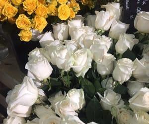 flowers roses bouquet image