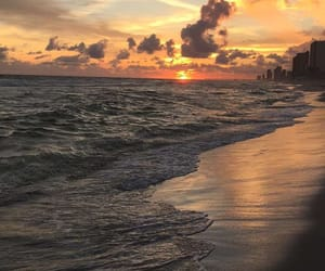 beach, water, and florida image