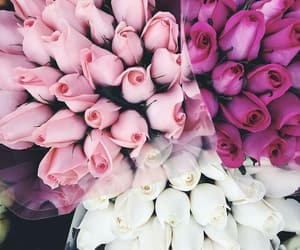 bouquet, pink, and white image