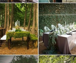 forest, intimate, and table image