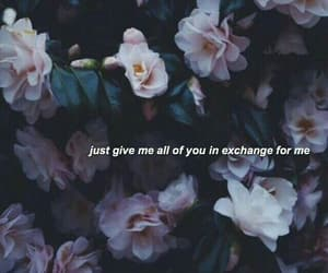 background, flowers, and tumblr image