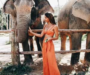 girl, elephant, and animal image