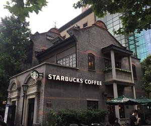 brown, coffee, and starbucks image