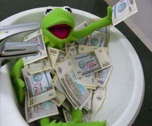 meme, funny, and kermit image