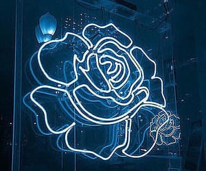blue, flower, and light image