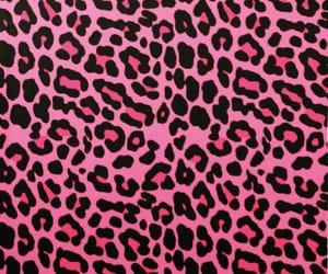 animal, leopard, and animal print image