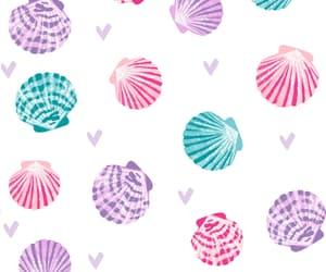 background, pattern, and seashell image