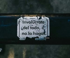frases, text, and reflection image