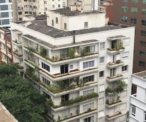 architect, arquitetura, and saopaulo image