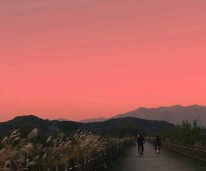 aesthetic, beautiful, and biking image
