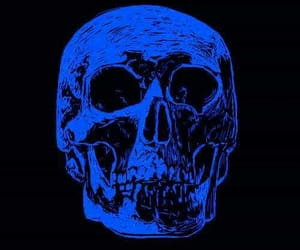 awesome, blue, and skeleton image