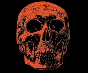 skeleton, skull, and smile image
