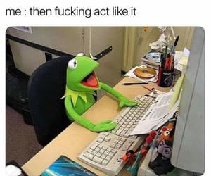 funny, kermit, and muppets image