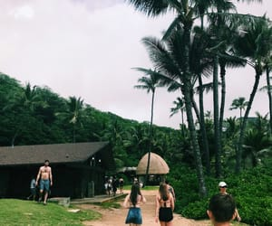 bungalow, girls, and palm image