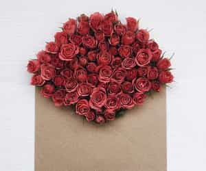 message, red, and roses image