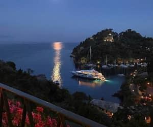night, sea, and flowers image