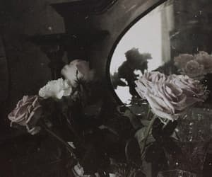 flowers, mirror, and roses image