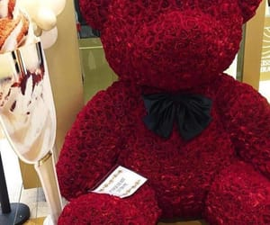 bear, roses, and teddy image
