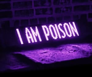 colors, poison, and 💜 image