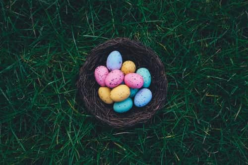 article, easter, and chocolate image