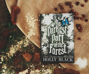 goodreads, hollyblack, and ya novels image