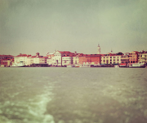 blurry, light, and venice image