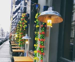 berlin, walk, and flowers image
