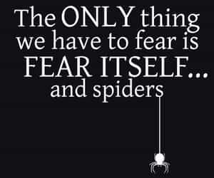 black and white, fear, and quotes image