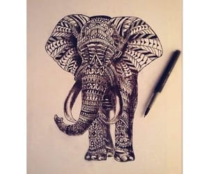 amazing, drawing, and animal image