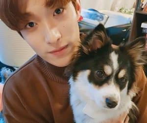 Seventeen, DK, and lee seokmin image