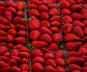 red, fruit, and strawberry image