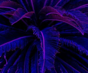 aesthetic, purple, and background image