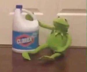 kermit, memes, and mood image