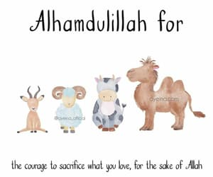 animals, loveallah, and courage image