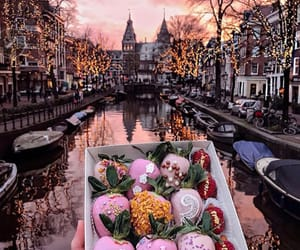 amsterdam, food, and city image