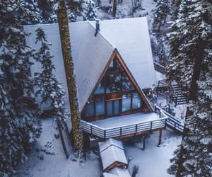 snow, trees, and house image