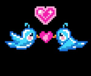 birds, png, and pixel image