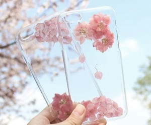 blossom, flowers, and pink image