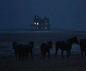 horse, house, and night image