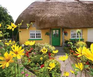 ireland and spring image