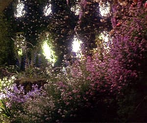 gif and The Secret Garden image