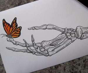 butterfly, hand, and skeletons image