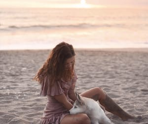 bali, dog, and dogs image