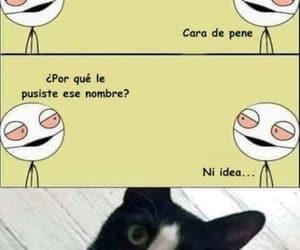 gato, chiste, and cara de pene image