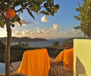orange, summer, and nature image