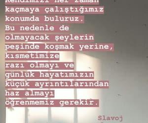 slavoj zizek, alıntı, and türkçe sözler image