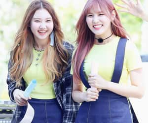 asian, korean girls, and pristin image