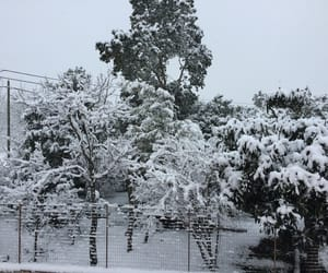 beautiful, neve, and snow image