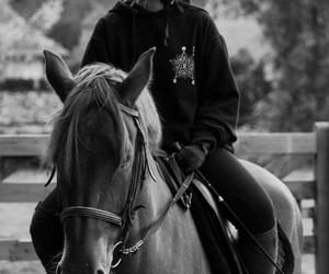 black and white, equitation, and horse image